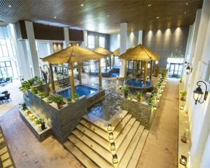 游泳馆 室内泡池