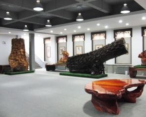 艺术展示中心